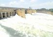 Dams 4