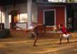 Kalaripayattu The Ancient Form Of Martial Arts Of Kerala 2