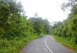 Roads In Kerala 3