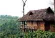 Tree houses in kerala 3